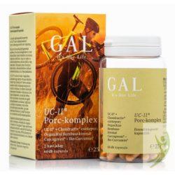 GAL UC-II Porc-komplex kollagén, hialuronsav, kondroitin és teljes spektrumú kurkuma kivonattal 60 db
