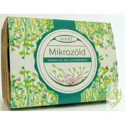 Salátázó Mikrozöld ültetőcsomag FODROS KEL MIX - papírtálcás